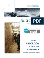 13_Ensayo-Absorción-Ladrillo.pdf