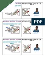 ELECCIONES ESCOLARES 2017 CARA.docx