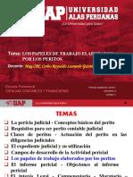 SEMANA 6 - PAPELES DE TRABAJO DEL PERITO JUDICIAL.pdf