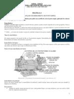 Practica 3 - Afilado Final Con Conclusiones