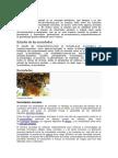 Especificación ANSI AISC-LRFD-2010 Para Construcciones de Acero