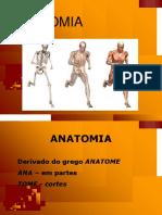 Anatomia (2