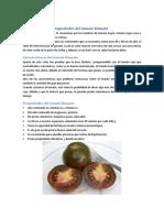Características y Propiedades Del Tomate Kumato