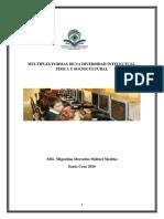 Multiples Formas de La Diversidad Intelectual