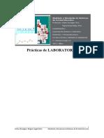 practicas_simulacion_msse.pdf