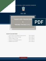 Auditoria Financiera Neuma Tacna Sac - 5to A