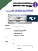 SEMIANRIO 1111111