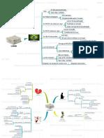 LINDB-em-Mapa-Mental-PDF.pdf