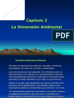 Capitulo II dimension ambiental
