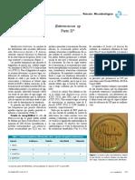 Enterococos 2.pdf