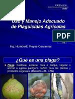 PLAGUISIDAS.pdf