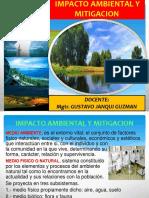 IMPACTO AMBIENTAL Y MITIGACION.pptx