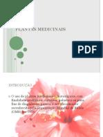 FITO-   Plantas Medicinais (1) 1 (1).pdf