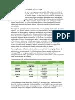 Ferttilizacion en Viveros Fruticolas