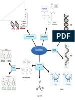 Actividad E7 (Nucleotidos)
