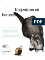 13-Hiperestrogenismo.pdf