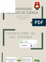 bioquimica PURINAS