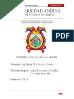 informe-dpl-suelos (1)