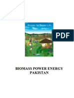 Biomass Power Energy Pakistan