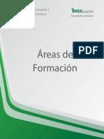 Áreas de Formación.pdf