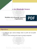 Modules 12.3- Strategic Issues in Non-profit Organization