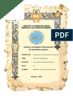 Secador (1).pdf