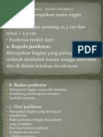 bagian pankreas