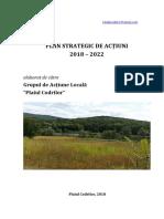 Plan strategic_Plaiul Codrilor.pdf