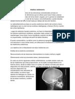 Análisis cefalómetro