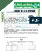 Ficha Descripcion de Un Animal Para Tercero de Primaria (1).Doc JUEVES 19 de JULIO