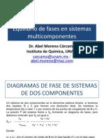 Equilibrio_de_fases_en_sist_multi_23218.pdf