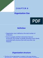 1.Chapter 6 - Organization Size.pptx