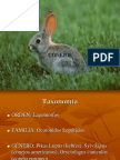 2006 TE Manual