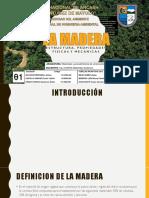 UNIDAD N°05-MADERA, ESTRUCTURA Y PROPIEDADES