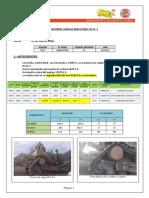 Informe Cadena Berco BPR1 D11T-1