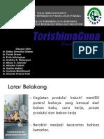 Ergonomi Pt Torishima Fixed