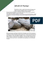 Bosque Petrificado de Puyango Datos Informativos