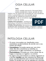 Bioq.clinica Rim e Funcao Renal