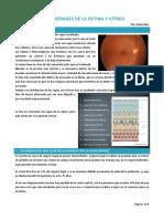 4. Enfermedades de La Retina y El Vítreo. Dra. Benavides