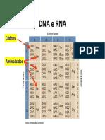 DNA e RNA --- material de apoio {COURSERA}.pdf