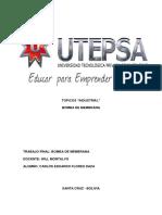 TRABAJO FINAL TOPICOS.docx