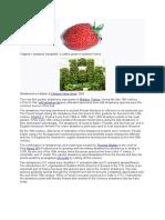 Strawberry History