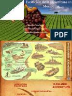 Evolución de La Agricultura en México