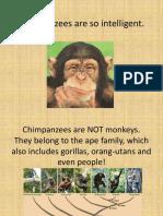 chimpanzeesfacts-160926091536