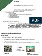 ictiologa-1-1220416282432024-8 (1)