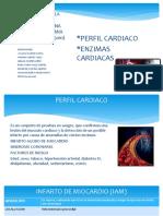 PERFIL CARDIACO bioquimica.pptx