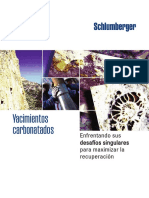 YACIMIENTOS CARBONATADOS.pdf