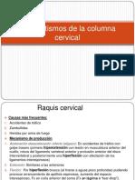 columna cervical - traumatismos