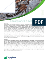 escorpion.pdf
