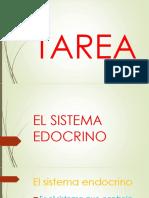 EL SISTEMA EDOCRINO.pptx